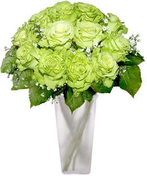 Green गुलाब