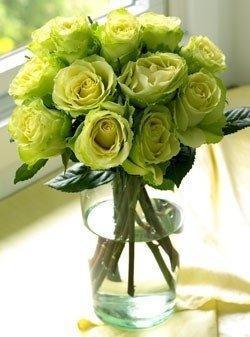 Green rosas