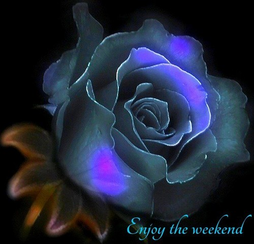 Have a nice Saturday and a beautiful weekend
