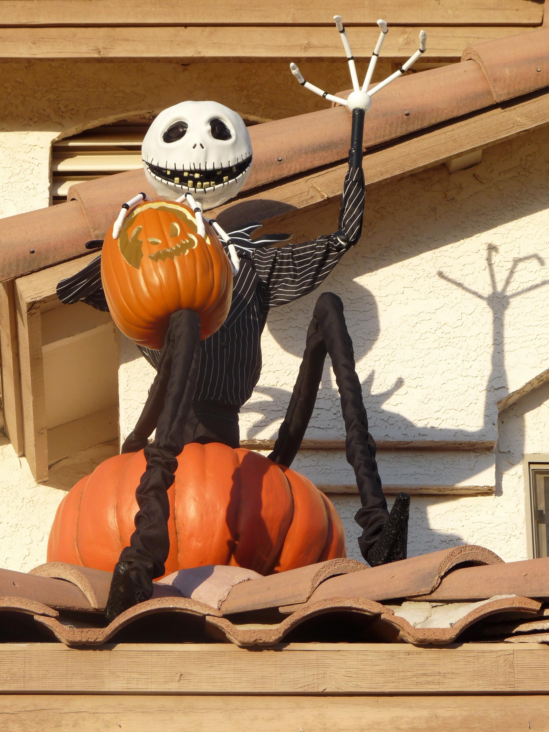 Jack and Zero Halloween display