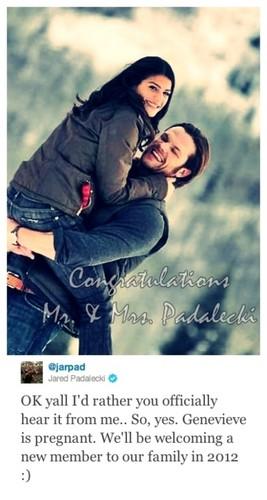 Jared Padalecki & Genevieve Cortese wallpaper called Jared&Gen