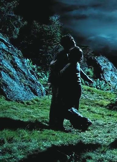 LUPIN & BLACK - (Harry Potter and the Prisoner of Azkaban)