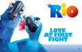 Love at first flight - rio-the-movie photo