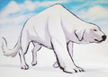 Naga, Korra's polar bear dog - avatar-the-legend-of-korra photo