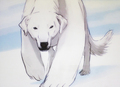 Naga, Korra's polar beer dog