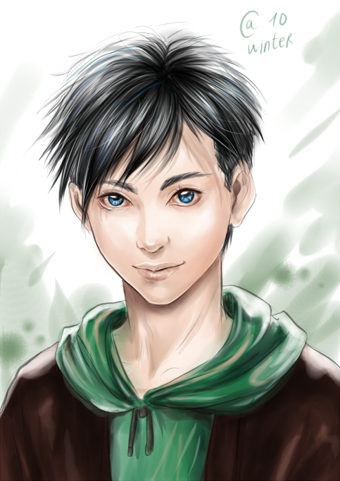 young-justice-robin Fa...