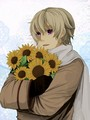 Sunflower Hold - hetalia-russia%E2%9D%A6 photo