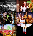 The Wizard of Oz - the-wizard-of-oz fan art