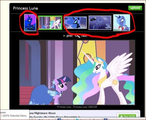 This is the Luna club, not the Celestia and Twilight one.