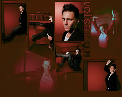 Tom Hiddleston wallpaper entitled Tom Hiddleston 1280x1024 desktop wallpaper