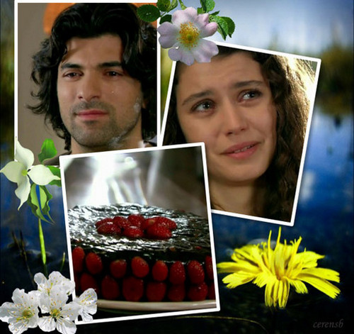 Fatmagül'ün Suçu Ne 壁紙 possibly with a bouquet, a candied fruit, and an 前菜 entitled fatmagul ve kerim
