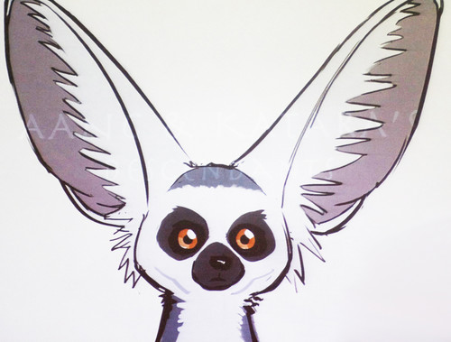 ring tailed winged lémur, lemur concept