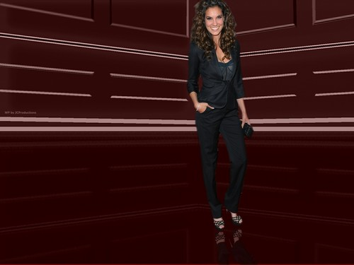 NCIS: Los Angeles fond d'écran with a business suit and a well dressed person called Agent Kensi Blye