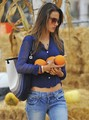 Alessandra Ambrosio at Shawn's Pumpking Patch in Santa Monica, Oct 25