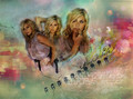 AlysonM Wallpapers! - alyson-michalka photo