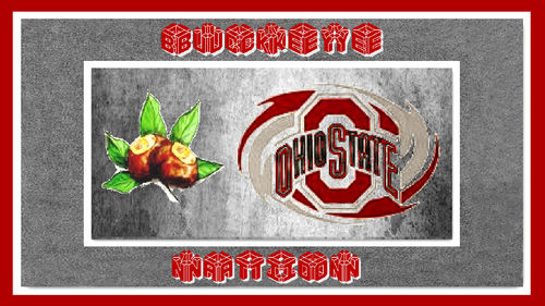 BUCKEYE NATION