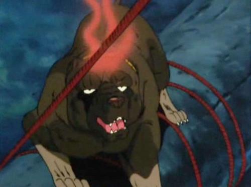 Benizakura's death.