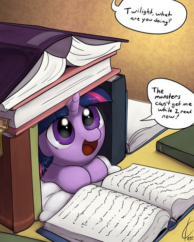 Bookfort Twilight