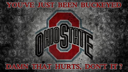 Ohio State universidad baloncesto fondo de pantalla probably with anime entitled DAMN THAT HURTS