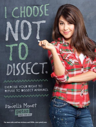 Daniella Monet for peta2