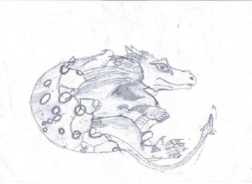 Dragonology hatching dragon
