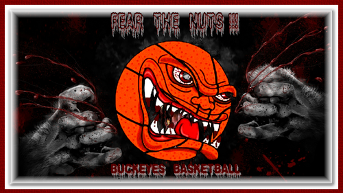 FEAR THE NUTS BUCKEYE basketball, basket-ball