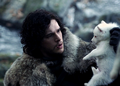 Ghost and Jon Snow - game-of-thrones-direwolves photo