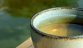 Green Tea - tea photo