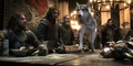 Grey Wind and Robb Stark - game-of-thrones-direwolves photo