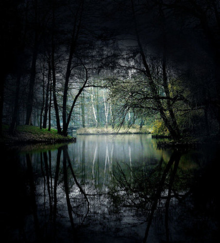 I know a place..deep in the forest