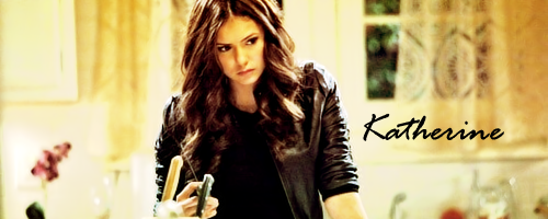 Katherine Pierce - katherine-pierce-and-elena-gilbert Fan Art