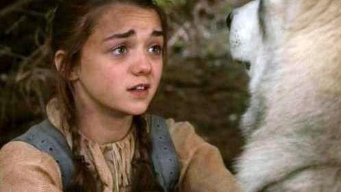 Nymeria and Arya Stark