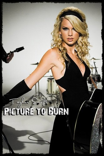 Picture To Burn (Fanmade Single Cover)
