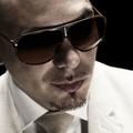 Pitbull...!!