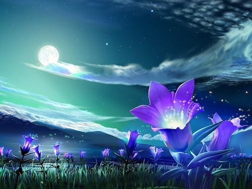 Purple फूल midnight wallpaper.