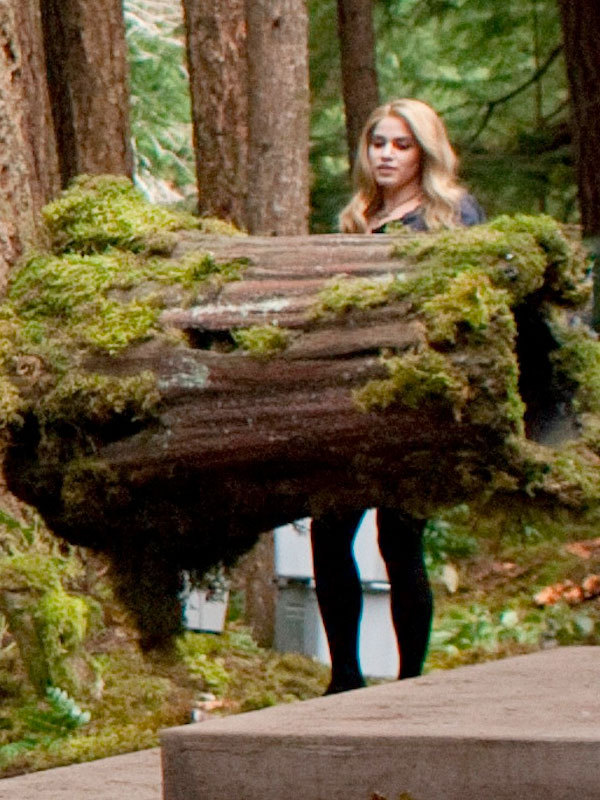 Rosalie Hale - Breaking Dawn - Twilight Series Photo ...