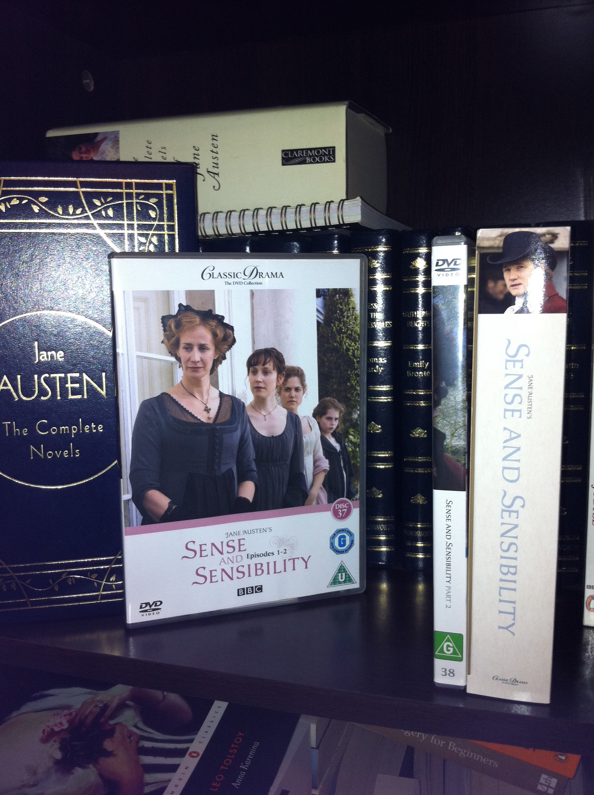 Sense and Sensibility 2008 BBC miniseries