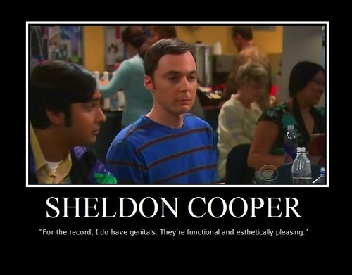 Sheldon Cooper wallpaper possibly with anime entitled Sheldon Cooper :]