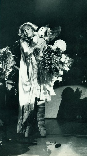 Stevie On Tour - stevie-nicks Photo