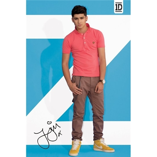 One Direction wallpaper possibly with a pantleg, bellbottom trousers, and a legging called Zayn ♥