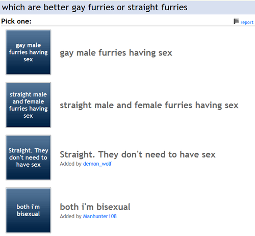 A pick about which furry of orientation should have ***? O_o