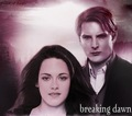 Break Dawn. - bella-and-carlisle fan art