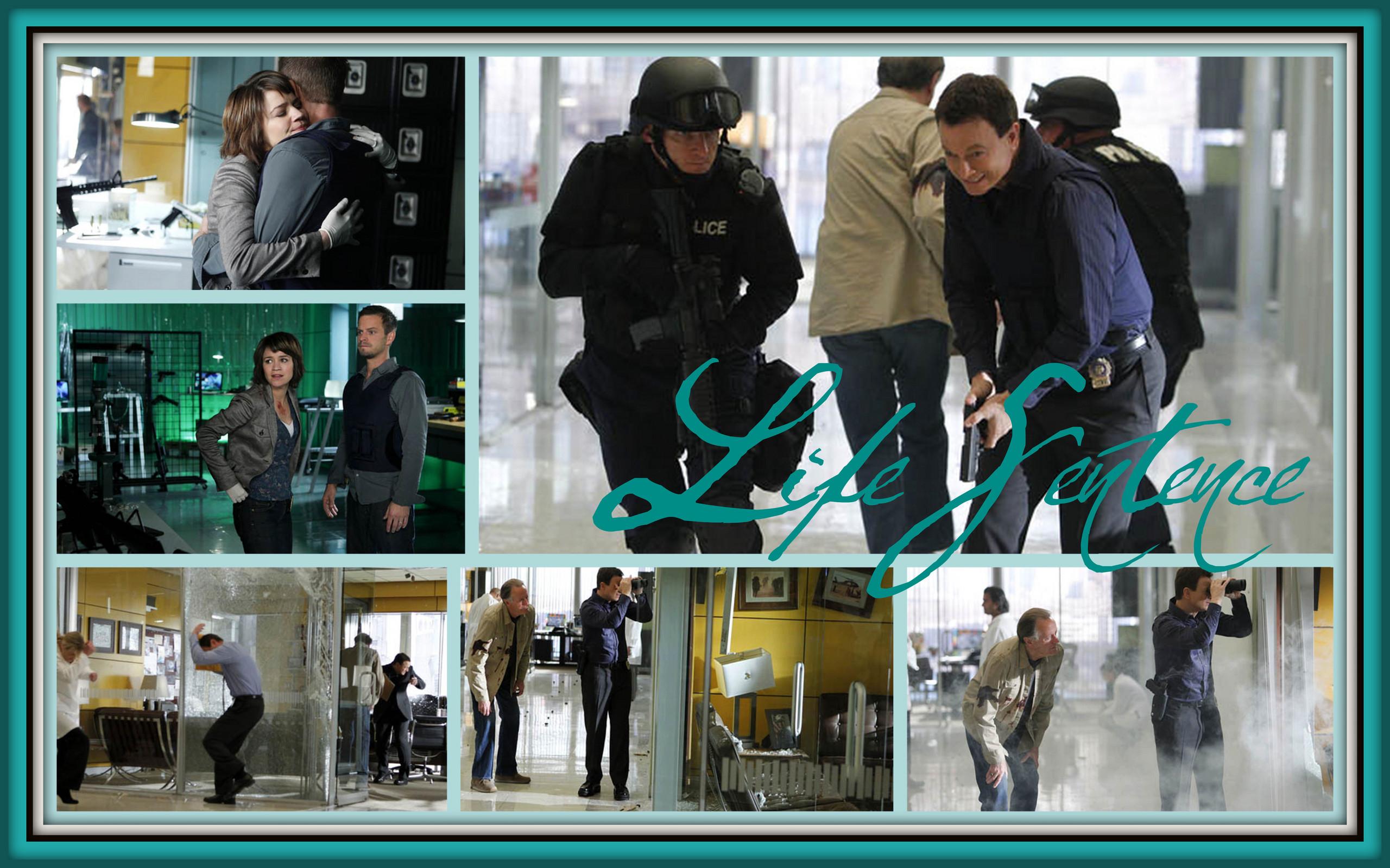 CSI:NY - CSI:NY Fan Art (26427844 ...