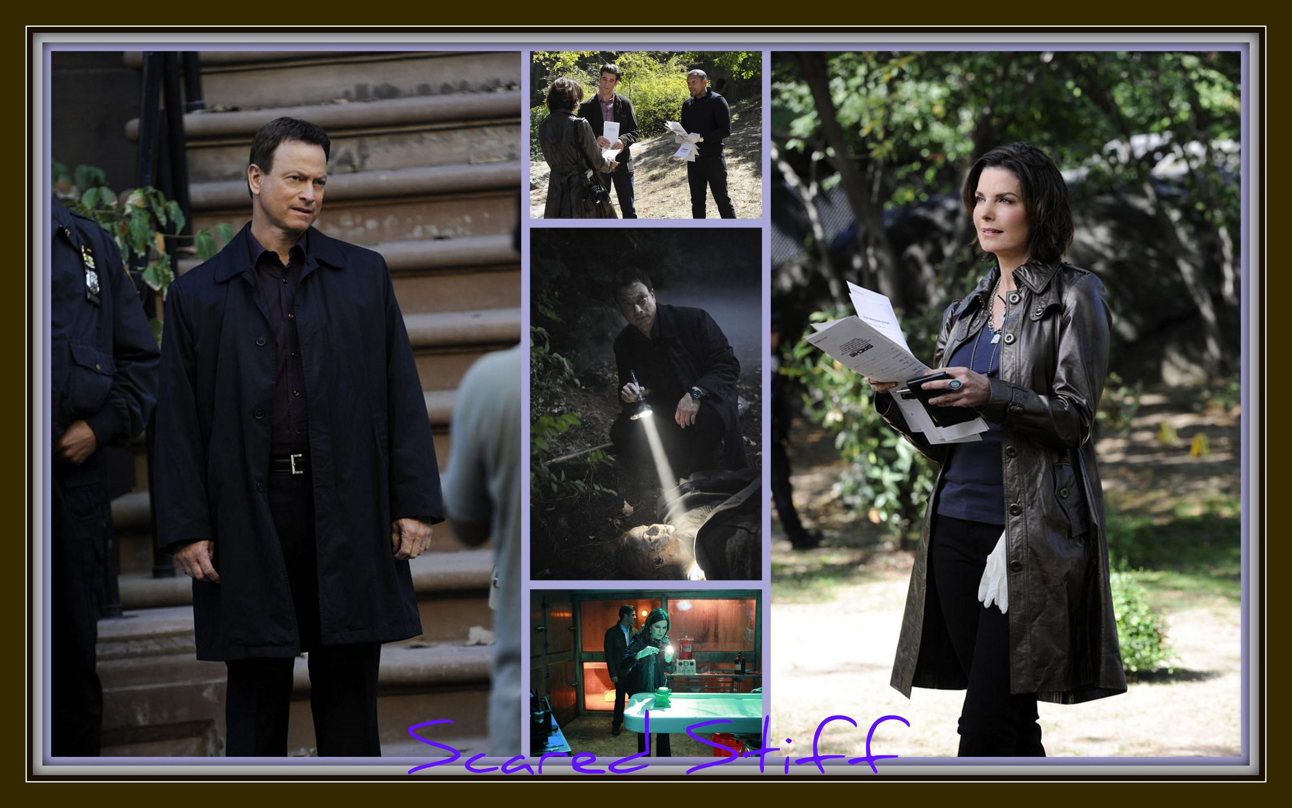 CSI:NY - CSI:NY Fan Art (26427897 ...