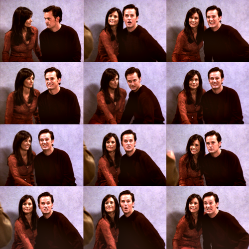 Monica and Chandler wallpaper titled Chandler&Monica;