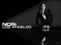 Daniela Ruah in Black