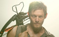 Darryl Dixon - daryl-dixon photo