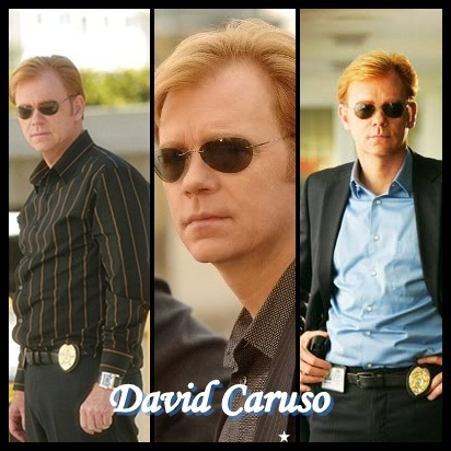 David Caruso Lt. Horatio Caine