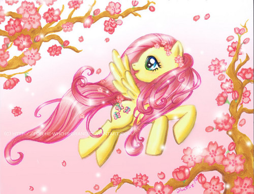 My Little Pony Friendship Is Magic Wallpaper Called Fluttershy