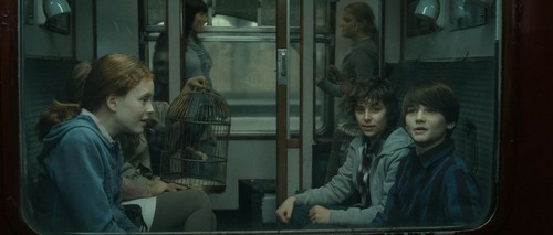 Harry Potter and the Deathly Hallows [Part 2] - harry-potter Screencap